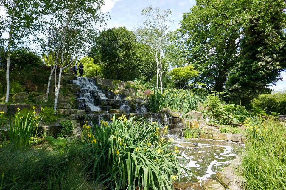 Japanese garden in regents park