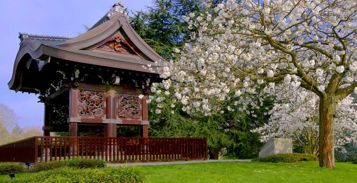 Kew Gardens Japanese Gardens