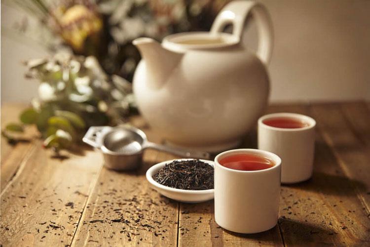 Kocha Japanese Green Tea