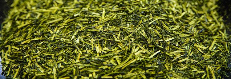 kukicha japanese green tea