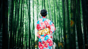 Japanese bamboo forest with geisha