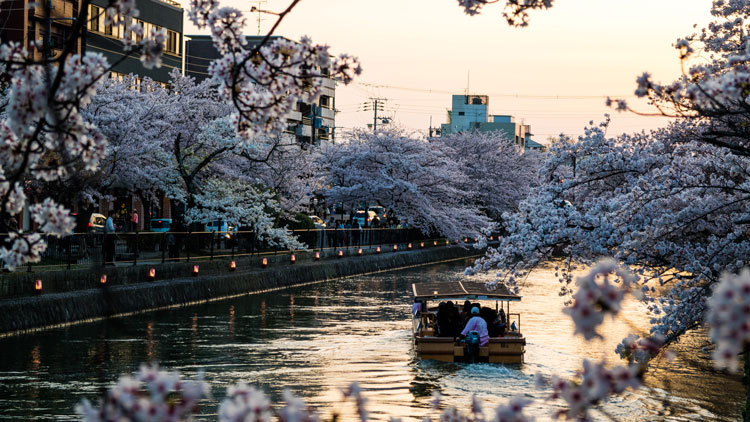 Japanese river in Kyoto