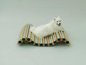 spitz dog house designed by hiroshi naito
