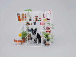 french bulldog in sou fujimoto designed dog house