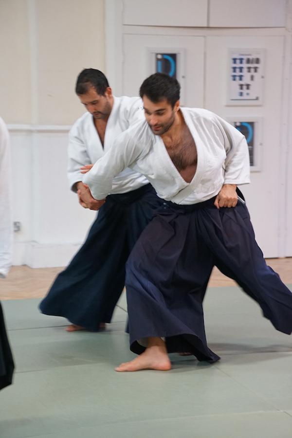 Practical Aikido Martial Arts